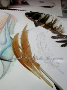 Feather pencil sketch © 2013 Julie Bergeron
